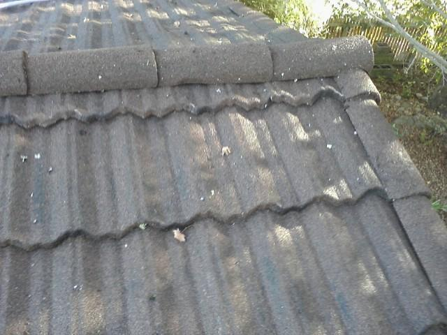 roof-after-cleaning-2